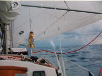Reefed sail in the Atlantic